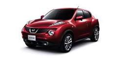 Nissan Juke (Ниссан Жук)