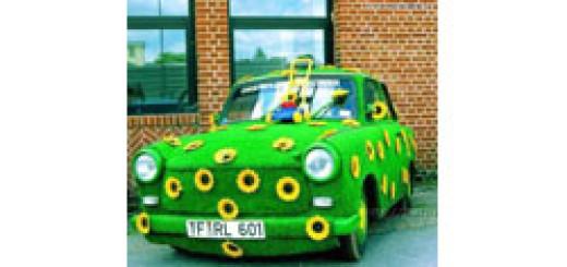 Глаза автомобиля