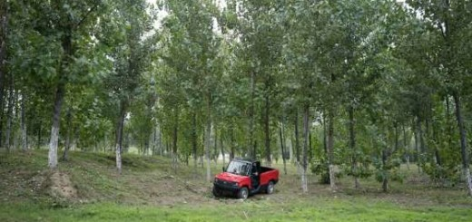 Бренд Kaiyun Motors, модель Pickman